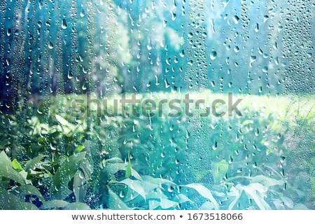 水面 · 雨滴 · 雨の · 日 · 天気 · 雨 - ストックフォト © anna_om