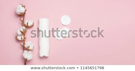 Ramo algodão planta toalha cosmético make-up Foto stock © Illia