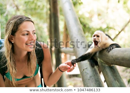 curious monkey holding woman hand in forest Stock photo © Lopolo
