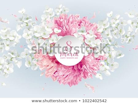 tulpen · appel · bloesem · vector · wenskaart · vrouwen - stockfoto © lisashu