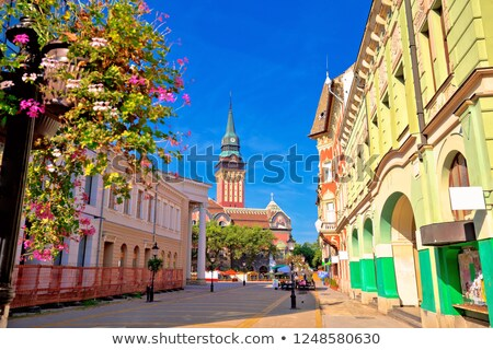 Subotica city hall and main square colorful street view Stock photo © xbrchx