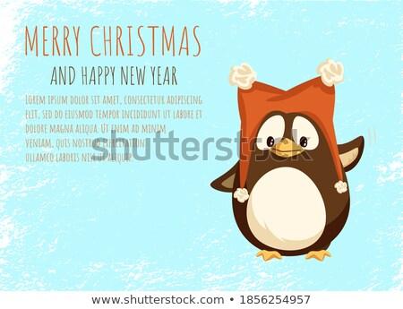 Pingüino sombrero peludo vector aislado Foto stock © robuart