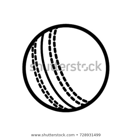 крикет мяча икона цвета шаблон дизайна Сток-фото © angelp