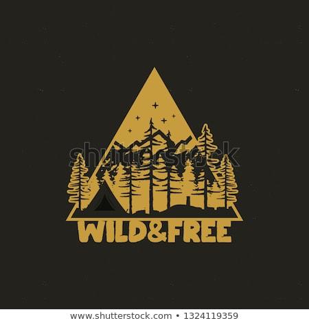 手工繪製 · 冒險 · 標籤 · 山 · 森林 · 插圖 - 商業照片 © jeksongraphics