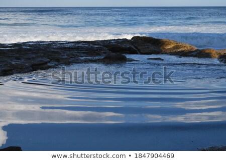 海岸線 南 シドニー 風光明媚な オーストラリア ビーチ ストックフォト © lovleah