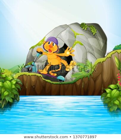 tiger on scooter jungle scene stock photo © colematt