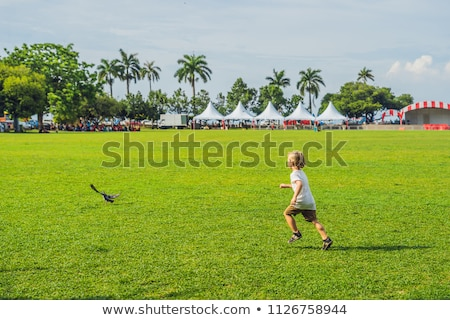 Boy on Padang Kota Lama or simply called The Padang, is the parade ground and playing field created  Stock photo © galitskaya