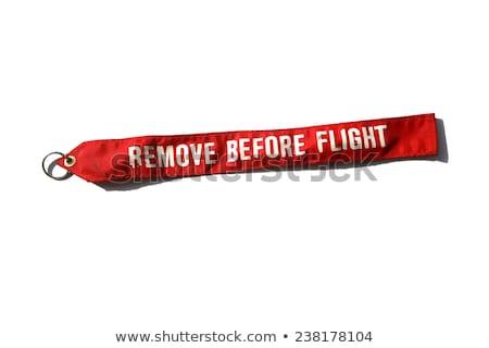 Check-in before flight Stock photo © pressmaster