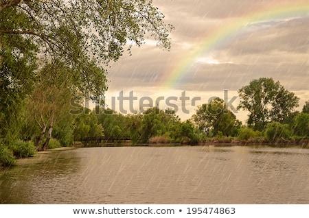 реке сцена дождливый день иллюстрация небе Сток-фото © colematt