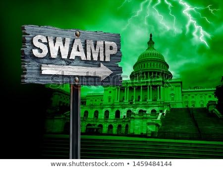 Pântano política drenar Estados Unidos profundo governo Foto stock © Lightsource
