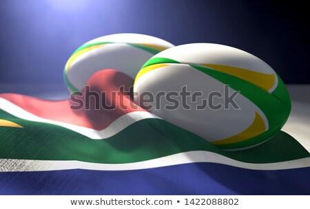 pár · Dél-Afrika · fű · természet · afrikai · szafari - stock fotó © albund