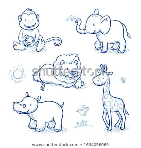 Cartoon cute afrika illustratie Stockfoto © balabolka