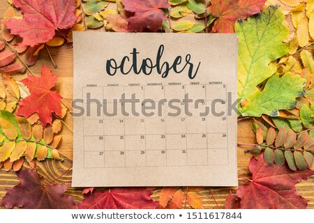 Overview of October calendar sheet and group of colorful autumn leaves Stock photo © pressmaster