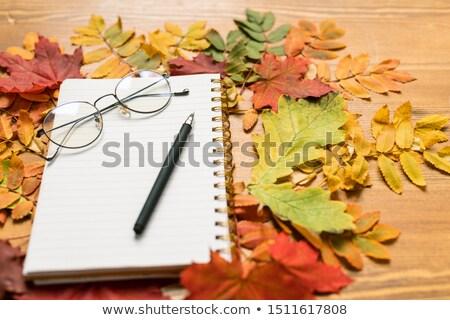 Farbenreich Blätter Schönschreibheft Stift Herbst Stock foto © pressmaster