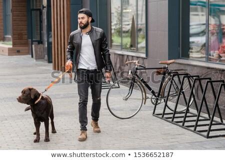 fickó · tart · aranyos · kutya · portré · férfi - stock fotó © pressmaster