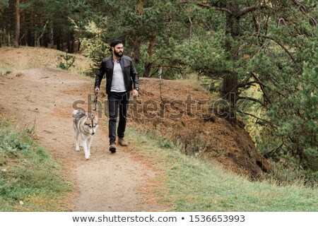 Young man in casualwear walking down footpath while holding leash of his dog Stock photo © pressmaster