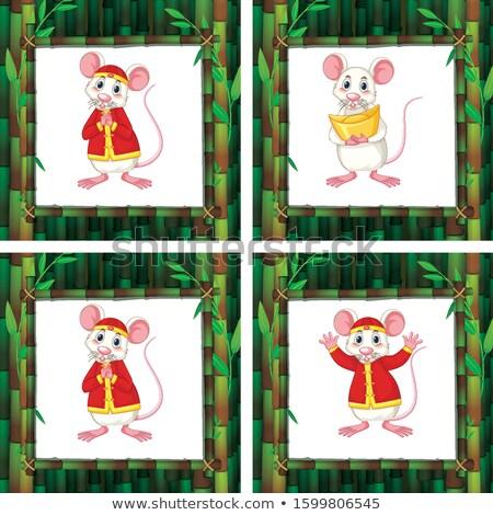 Cute cuatro diferente bambú marcos ilustración Foto stock © bluering