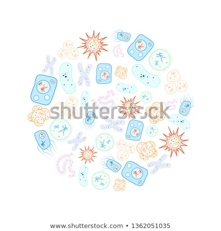 Set of bright colorful biology cells, bacteria and virus arranged in circle shape on white Stock photo © evgeny89