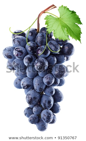 Fresh grape cluster with green leafs stock photo © stoonn
