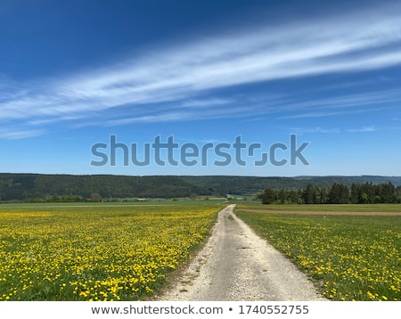 rural scene in south germany Stock photo © gewoldi