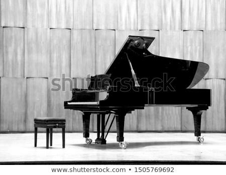 Vintage musique papier piano à queue texture métal Photo stock © vichie81