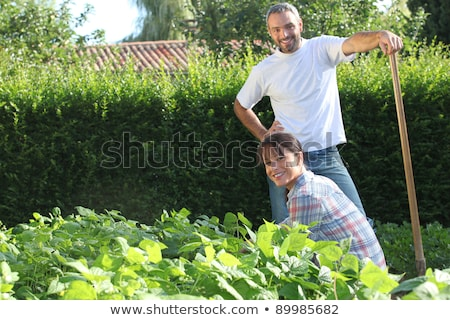 couple working in a kitchen garden Stock photo © photography33