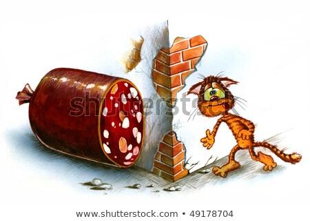 Stockfoto: Hongerig · kat · geluk · rond · hoek · vis