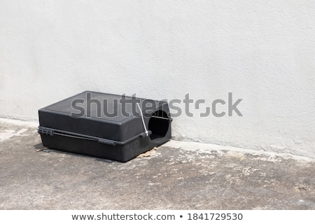 Black plastic mousetrap with bait Stock photo © AndreyKr
