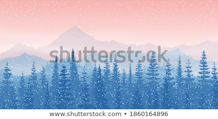 rural landscape with conifers in norway Stock photo © gewoldi