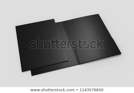 Stockfoto: Zwarte · map · geïsoleerd · witte · kantoor