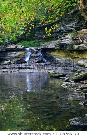 Сток-фото: ручей · осень · цветы · природы · пейзаж · рок