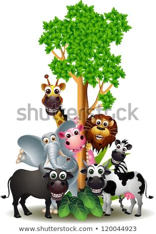 Cow cartoon with blank sign Stock photo © dagadu