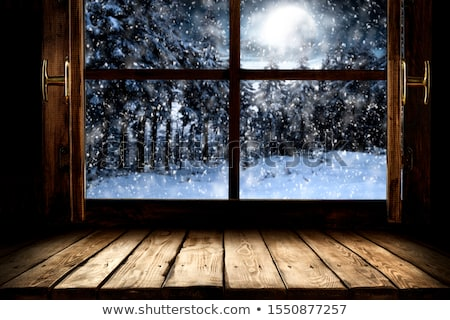 old window in winter stock photo © sandralise
