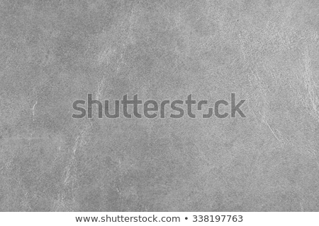 グレー · 革 · テクスチャ · クローズアップ · 牛 · スペース - ストックフォト © homydesign