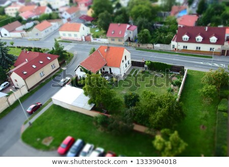 beautiful bird eye prague stock photo © tannjuska