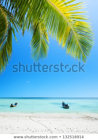 Stock fotó: Boats Moored At The Tropical Beach Vertical Composition