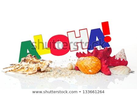 parola · aloha · starfish · conchiglie · bianco · estate - foto d'archivio © AndreyKr