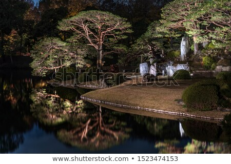 Stock photo: Shade tree by pond in park