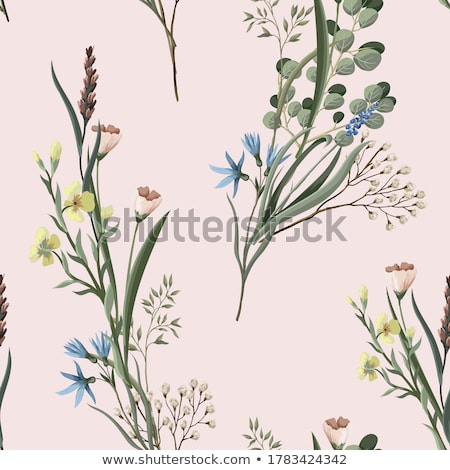 floral background with clover stock photo © julietphotography