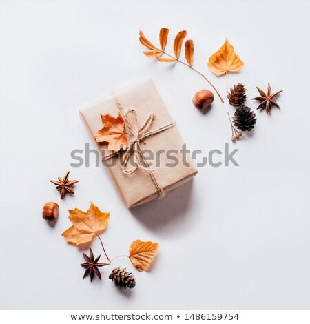 Autumn Gifts Stock photo © zhekos