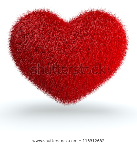 red furry heart Stock photo © jirkaejc