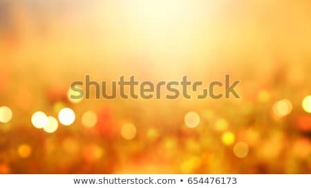 absztrakt · arany · homály · bokeh · terv · fény - stock fotó © karandaev