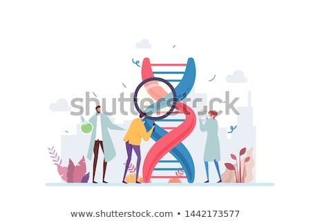 Homme · fécondité · médicaux · groupe · humaine · spermatozoïdes - photo stock © lightsource
