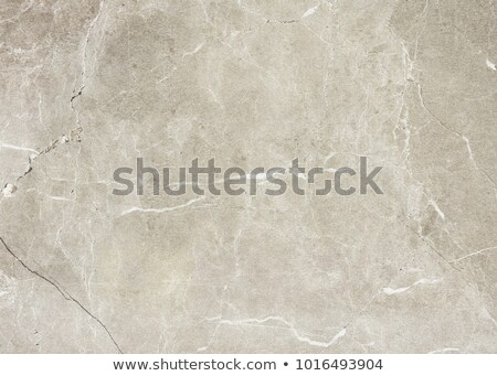 Aged brown cemented floor Stock photo © cherezoff