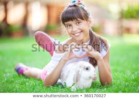 Green Spring Pet Sign Stock photo © Lightsource