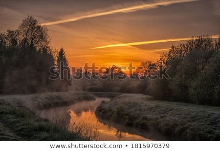 sunrise at foggy meadow stock photo © juhku