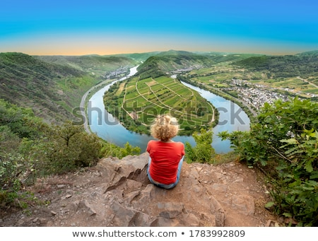 Panorama of the Rhine in Germany Stock photo © g215