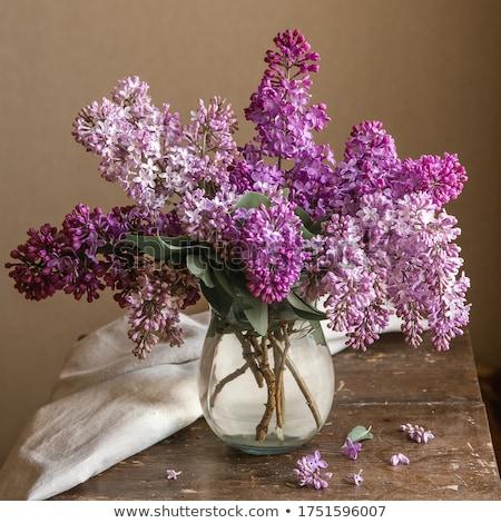 Stok fotoğraf: Bouquet Of Lilacs