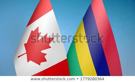 Kanada Mauritius bayraklar bilmece yalıtılmış beyaz Stok fotoğraf © Istanbul2009