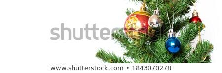 Noel oyuncaklar dal beyaz tatil Stok fotoğraf © Mikko